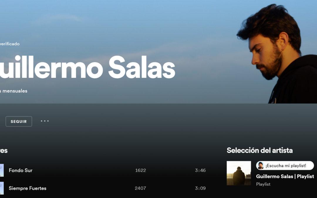 Guillermo Salas en Spotify